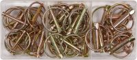 50 PCS LYNCH PINS ASSORTMENT (YT-06787)