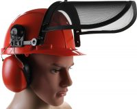 Safety Helmet | with Visor and Ear Protection (3641)